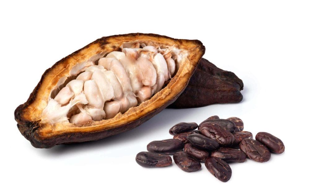 Vitaminbox kakóbab, fairtrade bio forrócsoki